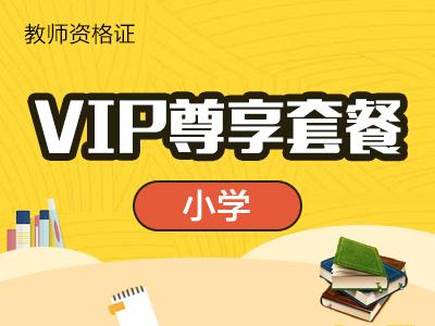 小学-VIP尊享套餐