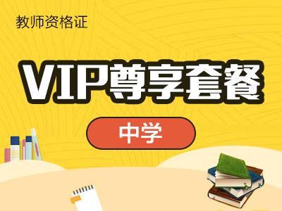 中学-VIP尊享套餐