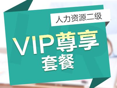 二级人力VIP 尊享套餐