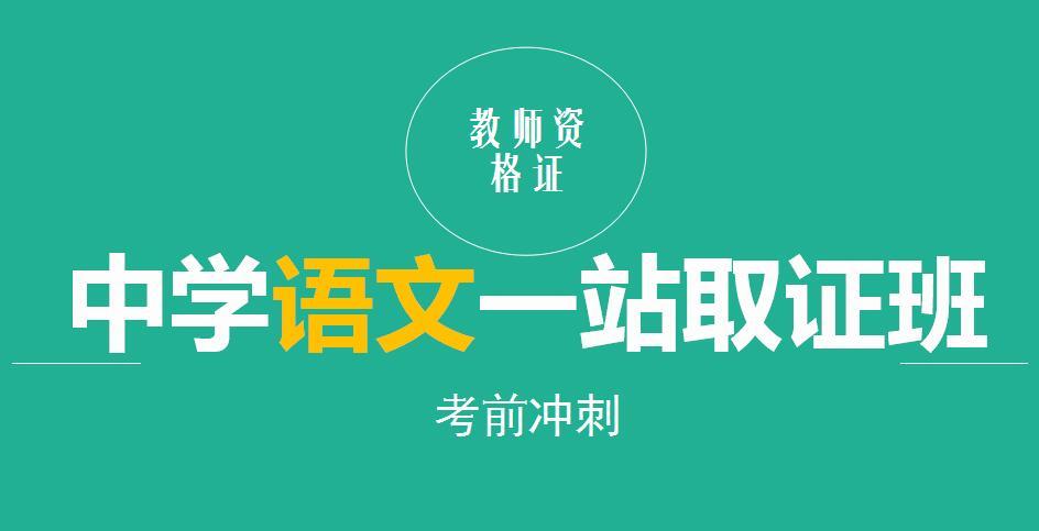 中学语文一站取证班