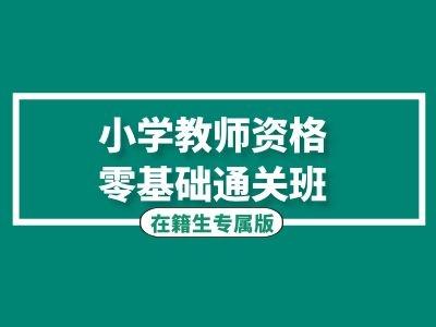 小学教师资格零基础通关班(在籍生专属)