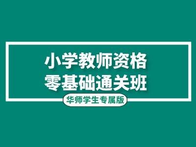 小学教师资格零基础通关班(华师学生专属)